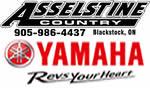 asselstine_yam_smaller