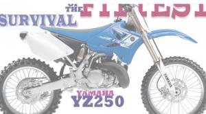 YZ250 Survival